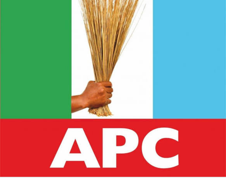 Imo North Bye-election: Imo APC goes for consensus candidate, sets up 9-man committee